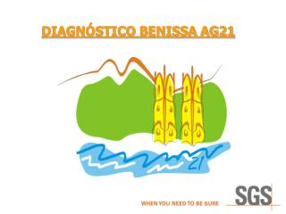 DIAGNÓSTICO BENISSA AG21