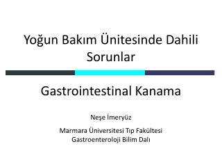 Yoğun Bakım Ünitesinde Dahili Sorunlar Gastrointestinal Kanama