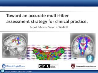 Toward an accurate multi-fiber assessment strategy for clinical practice.