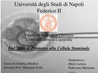 Universit  degli Studi di Napoli Federico II    Facolt  di Medicina e Chirurgia Corso di Laurea in Logopedia