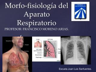 Morfo-fisiología del Aparato Respiratorio PROFESOR: FRANCISCO MORENO ARIAS.
