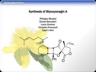 Synthesis of Biyouyanagin A Philippe Murphy Daniel Beaudoin Lucie Zimmer Christian Perreault