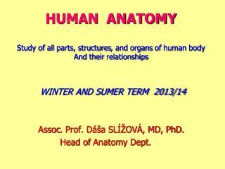 WINTER AND SUMER TERM  2013/14 Assoc . Prof. D�a SL͎OV�, MD, PhD. Head of  Anatomy  Dept .
