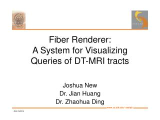 Fiber Renderer: A System for Visualizing  Queries of DT-MRI tracts