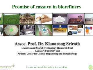 Promise of cassava in biorefinery