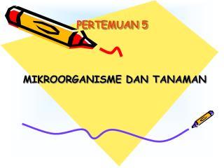 PERTEMUAN 5