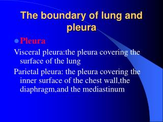 The boundary of lung and pleura