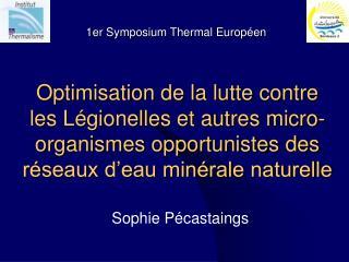 Sophie Pécastaings