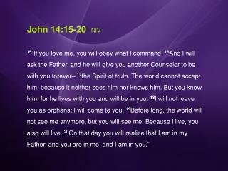 John 14:15-20 NIV