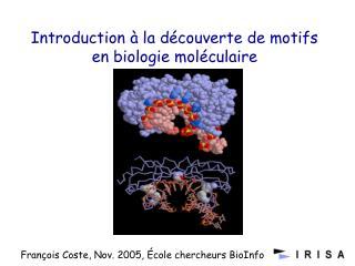 Introduction à la découverte de motifs en biologie moléculaire