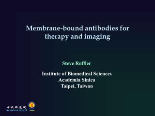 Membrane-bound antibodies for therapy and imaging