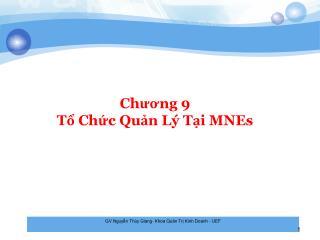 Chương 9 Tổ Chức Quản Lý Tại MNEs