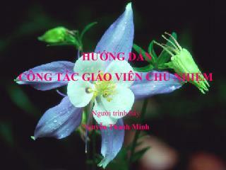 HƯỚNG DẪN  CÔNG TÁC GIÁO VIÊN CHỦ NHIỆM Người trình bày Nguyễn Thanh Minh