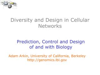 Diversity and Design in Cellular Networks