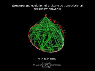 Structure and evolution of prokaryotic transcriptional  regulatory networks