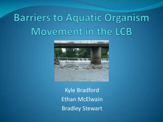 Barriers to Aquatic Organism Movement in the LCB