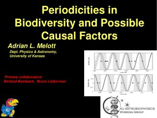 Periodicities in Biodiversity and Possible Causal Factors