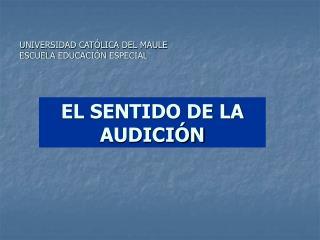 UNIVERSIDAD CATÓLICA DEL MAULE ESCUELA EDUCACIÓN ESPECIAL