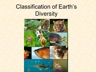 Classification of Earth's Diversity