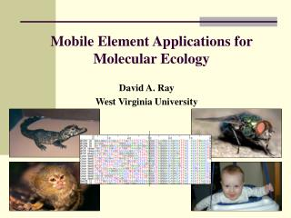 Mobile Element Applications for Molecular Ecology