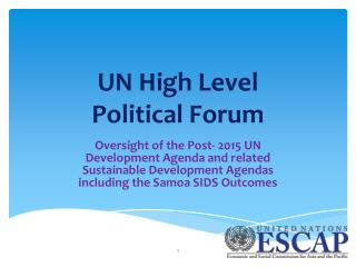 UN High Level  Political Forum