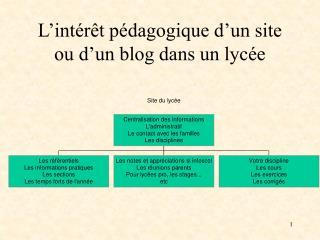 L'intérêt pédagogique d'un site ou d'un blog dans un lycée