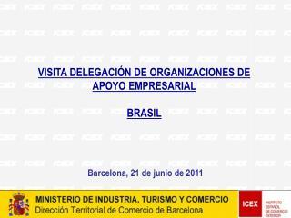 VISITA DELEGACIÓN DE ORGANIZACIONES DE APOYO EMPRESARIAL BRASIL