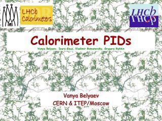 Calorimeter PIDs Vanya Belyaev, Ioury Gouz, Vladimir Romanovsky, Grygory Rybkin