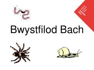 Bwystfilod Bach