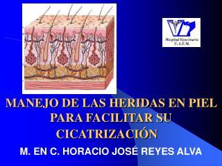 MANEJO DE LAS HERIDAS  EN PIEL  PARA FACILITAR SU CICATRIZACIÓN