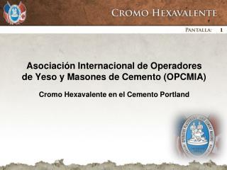 Asociación Internacional de Operadores de Yeso y Masones de Cemento (OPCMIA)