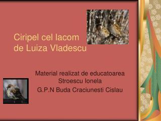 Ciripel cel lacom de Luiza Vladescu