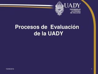 Procesos de  Evaluación   de la UADY