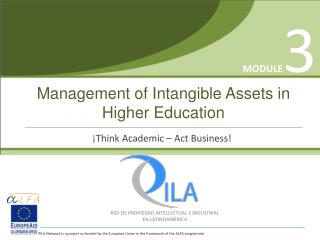 Management of Intangible Assets in Higher Education