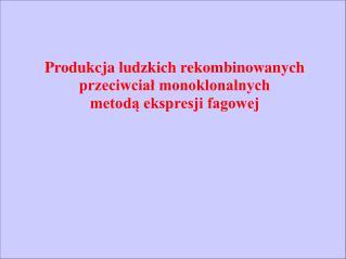 Produkcja ludzkich rekombinowanych przeciwciał monoklonalnych metodą ekspresji fagowej