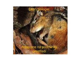 Ekofyziologie: Adaptace na podm�nky prost?ed�