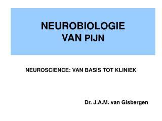 NEUROBIOLOGIE  VAN  PIJN