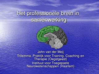 Het professionele brein in     samenwerking