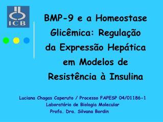 Luciana Chagas Caperuto / Processo FAPESP 04/01186-1 Laboratório de Biologia Molecular