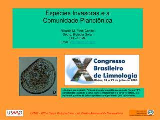 Espécies Invasoras e a  Comunidade Planctônica Ricardo M. Pinto-Coelho Depto. Biologia Geral