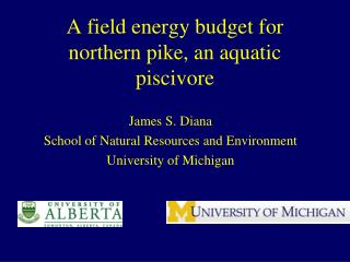A field energy budget for northern pike, an aquatic piscivore