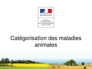 Catégorisation des maladies animales
