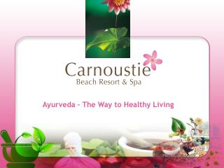 Ayurveda � The Way to Healthy Living