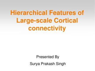 Hierarchical Features of Large-scale Cortical connectivity