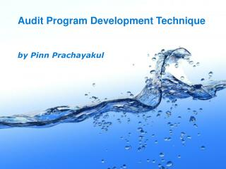 Audit Program Development Technique by Pinn Prachayakul