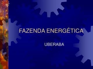 FAZENDA ENERGÉTICA