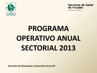 PROGRAMA OPERATIVO ANUAL SECTORIAL 2013