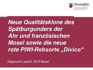 Siegmund Lawnik, DLR Mosel