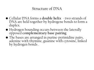S tructure of DNA