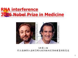 RNA interference 2006 Nobel Prize in Medicine
